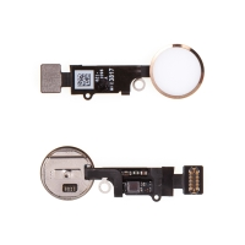 Obvod tlačítka Home Button pro Apple iPhone 8 / 8 Plus - bílé / zlaté - kvalita A+