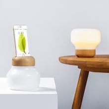 Lampa + Externí baterie (power banka) + nabíjecí stanice pro Apple iPhone / iPod - MFi certifikovaná - dřevo / sklo