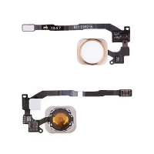 Obvod tlačítka Home Button včetně kovového rámečku a tlačítka Home Button pro Apple iPhone 5S / SE - bílo-zlaté - kvalita A+